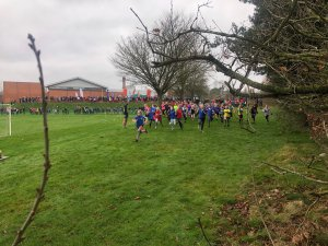 HBSSPAN Primary Cross Country - Meet 1